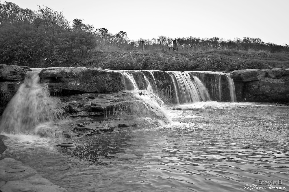 Waterfall by Stevie B