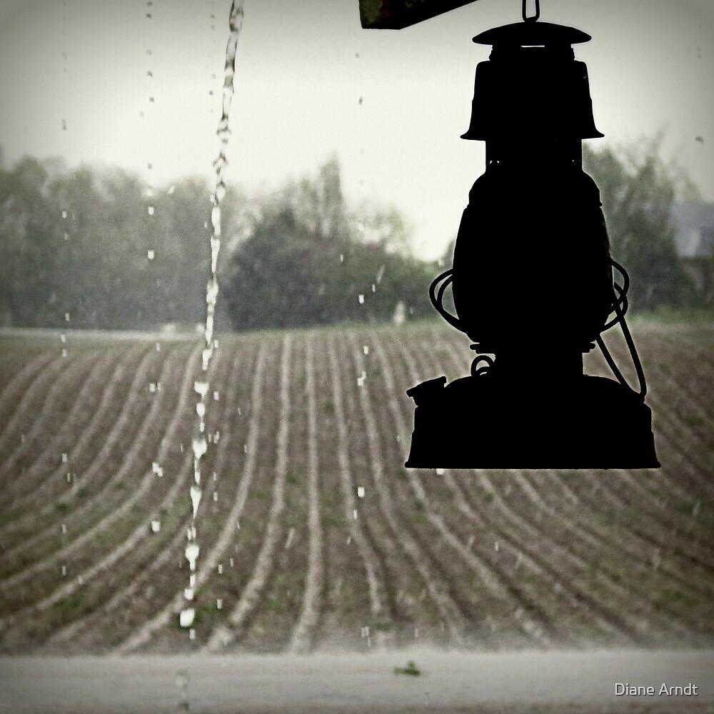 Rainy Season by Diane Arndt