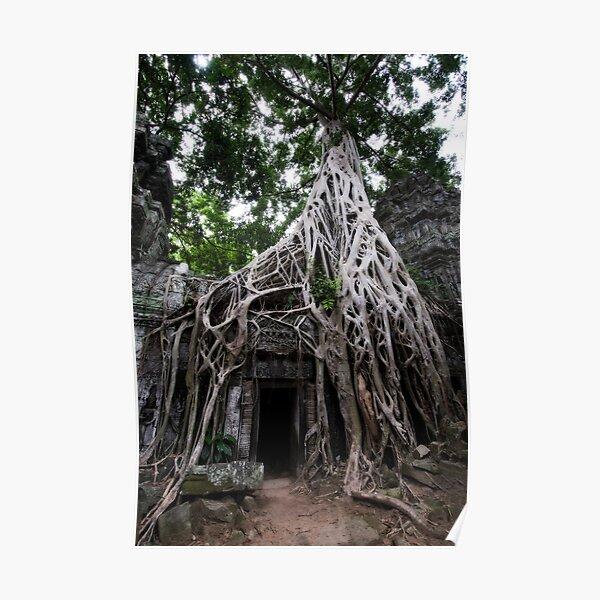 Entangled, Cambodia Poster