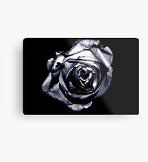 Rose Retina  Metal Print