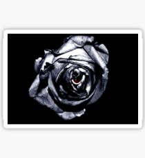 Rose Retina  Sticker