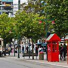 Christchurch City by Dilshara Hill