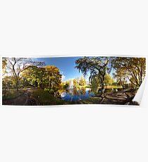 Nature fall a sleep in autumn. Riga  park panorama. Poster