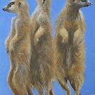 Meerkats by Carole Russell