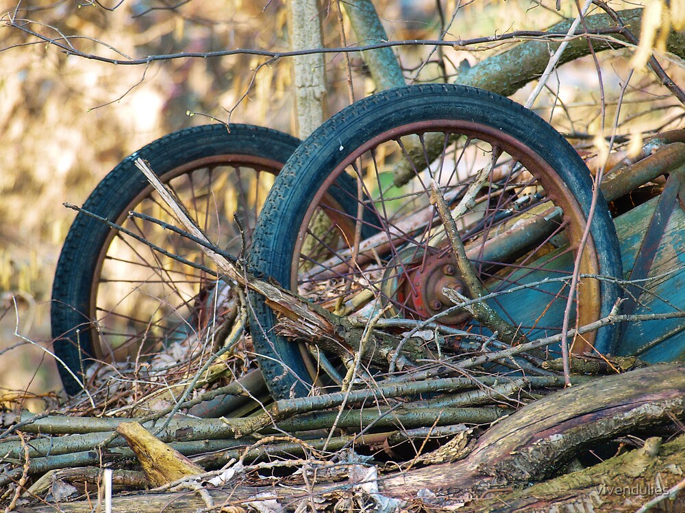 Old Discarded cart VRS2 by vivendulies