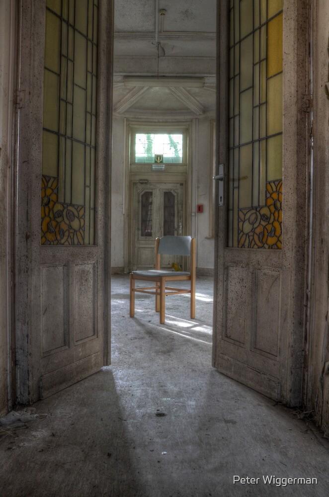Behind the doors by Peter Wiggerman