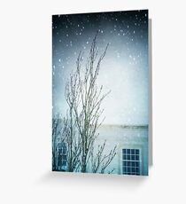 Cocooned Greeting Card