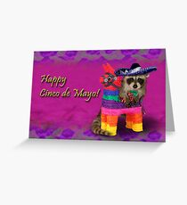 Cinco de Mayo Raccoon Greeting Card