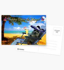 Happy Cinco de Mayo Raccoon Postcards