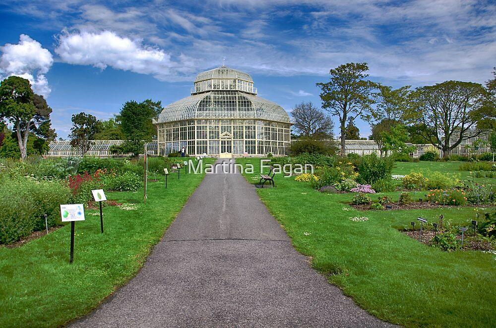 National Botanical Gardens by Martina Fagan