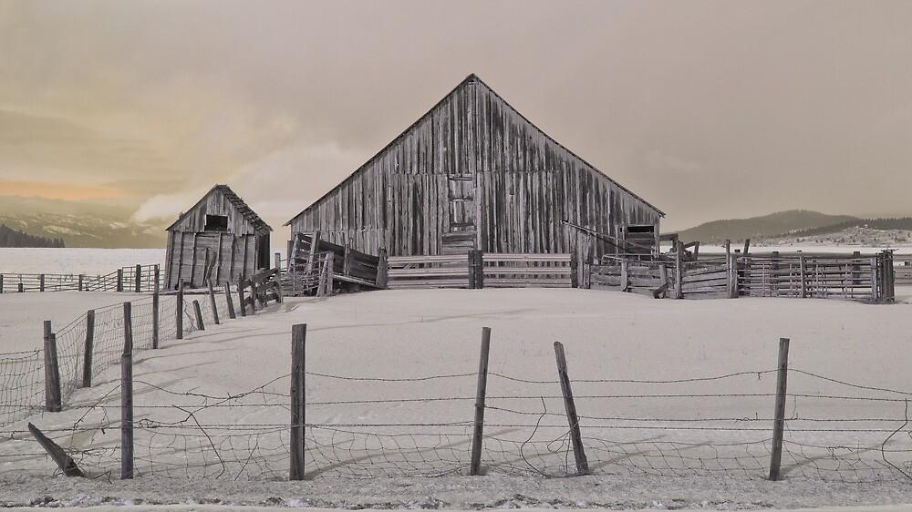 Old barn in the snow by BeardyGit