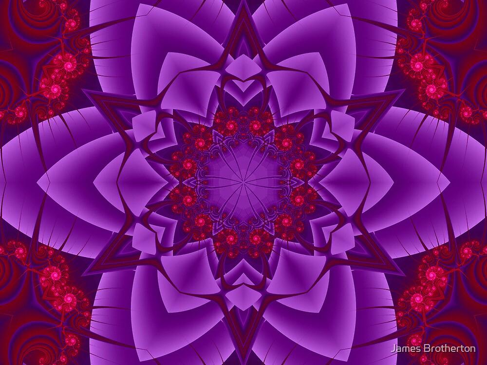 Gem Flower by James Brotherton