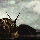 Ballad Surrealist Digital Art by Galen Valle