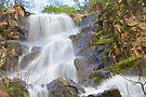 Buttermilk Falls by John Butler