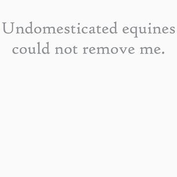 Undomesticated Equines 4 Dark Grey by CaelisMiran