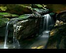 Garigal Grotto by vilaro Images