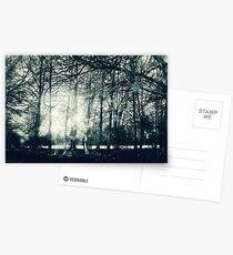 Faerie Wood Postcards