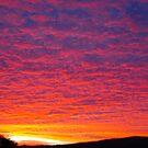 sunset sillouete by Glen Johnson