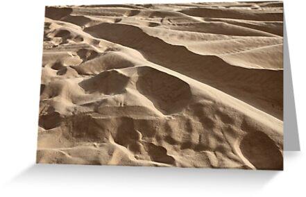 sand in the desert by mrivserg