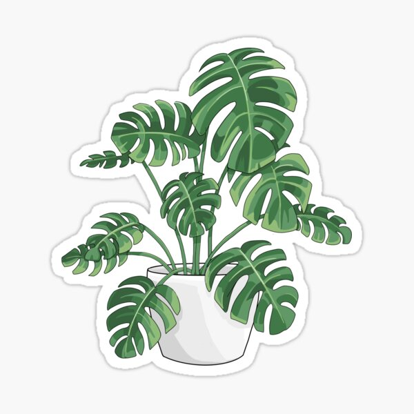 Usine de Monstera Sticker