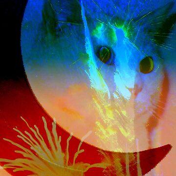 Celestial cat by rbb2676
