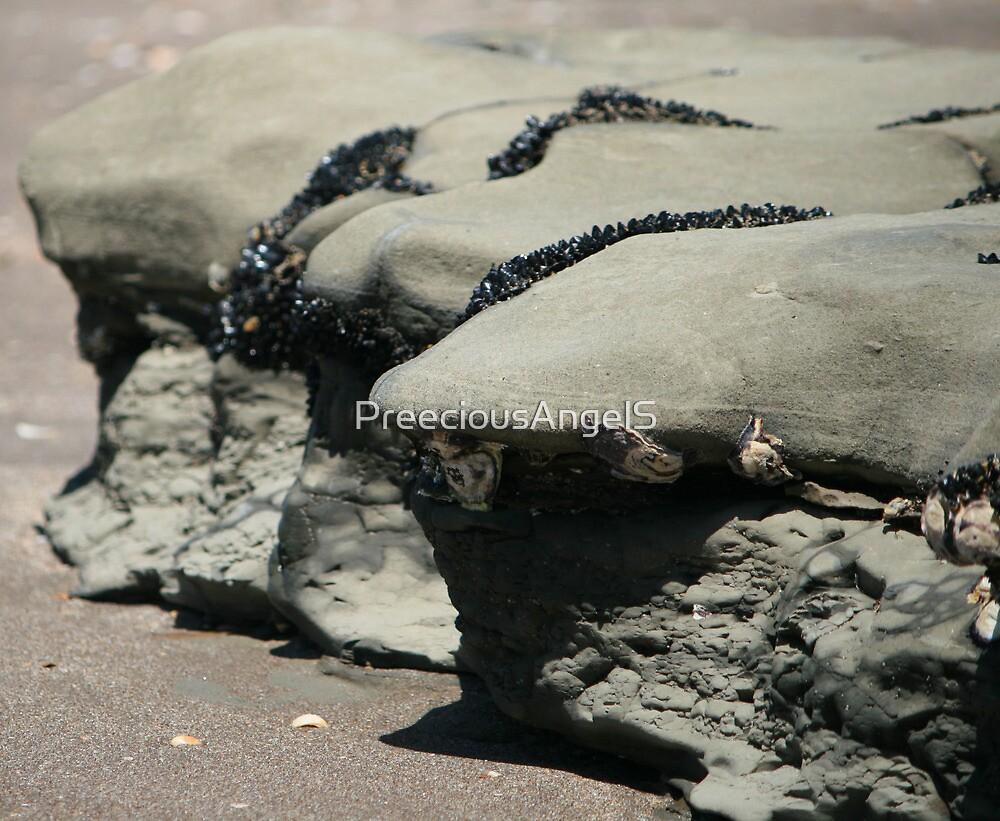 seashore rock by PreeciousAngelS