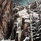 Frozen Falls by Karri Klawiter