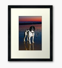benson at cooden beach - sunset Framed Print