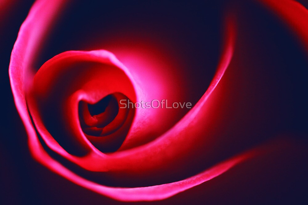 Be My Valentine by ShotsOfLove