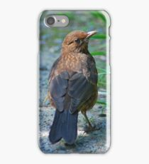 The Juvenille iPhone Case/Skin