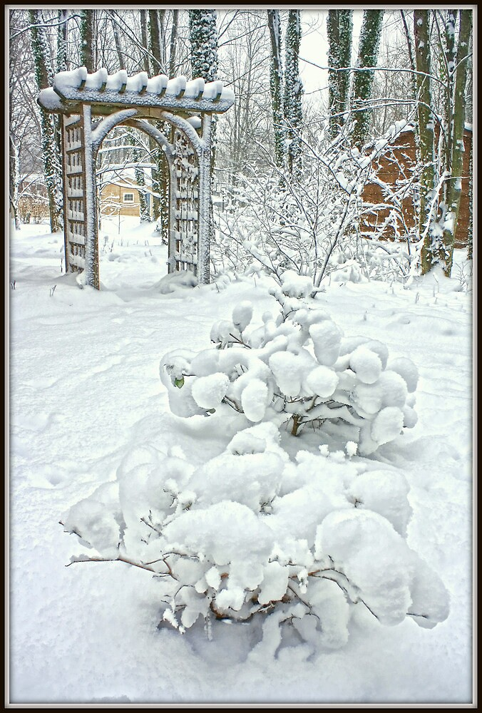 Disguised in Snow by Mikell Herrick