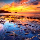 Tessellated Pavement by Husky