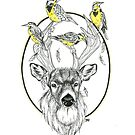 Buck and Meadowlarks  by Rose Swenson