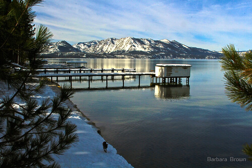 Tahoe View by Barbara  Brown