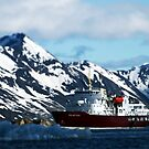 Polar Star and the Mountains by John Dalkin