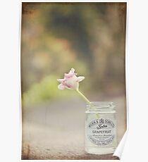 Tulip in jelly jar Poster