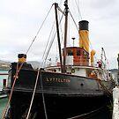 """ Steam Tug Lyttleton "" by terryfellows"