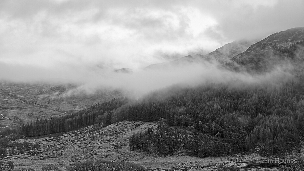Above Glen Trool by Tim Haynes