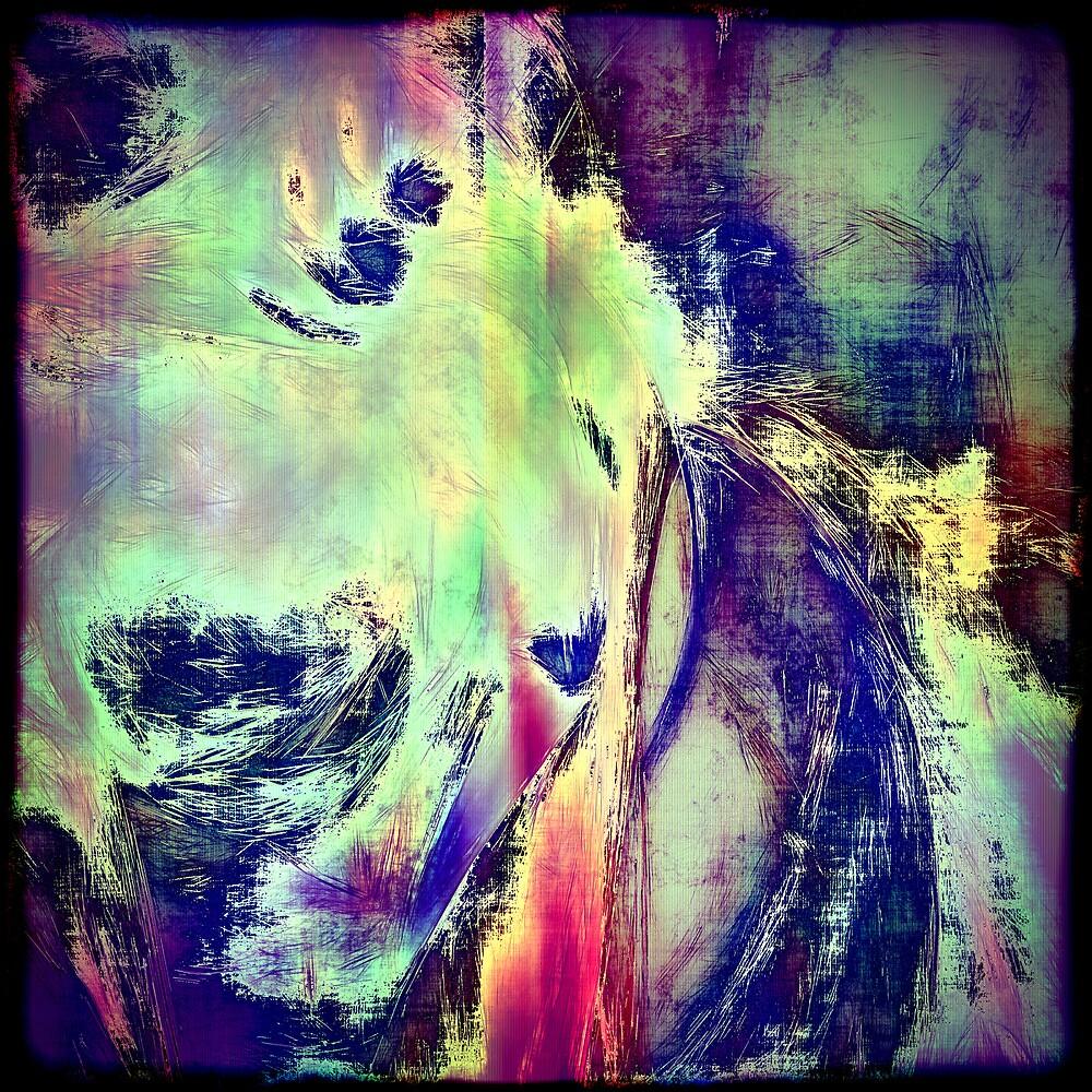 Scars by Benedikt Amrhein