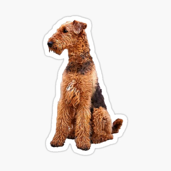 Airedale Terrier Cute Dog Sticker