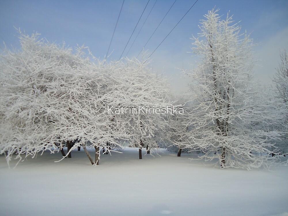 ~that is what i call winter~2 by KatrinKirieshka