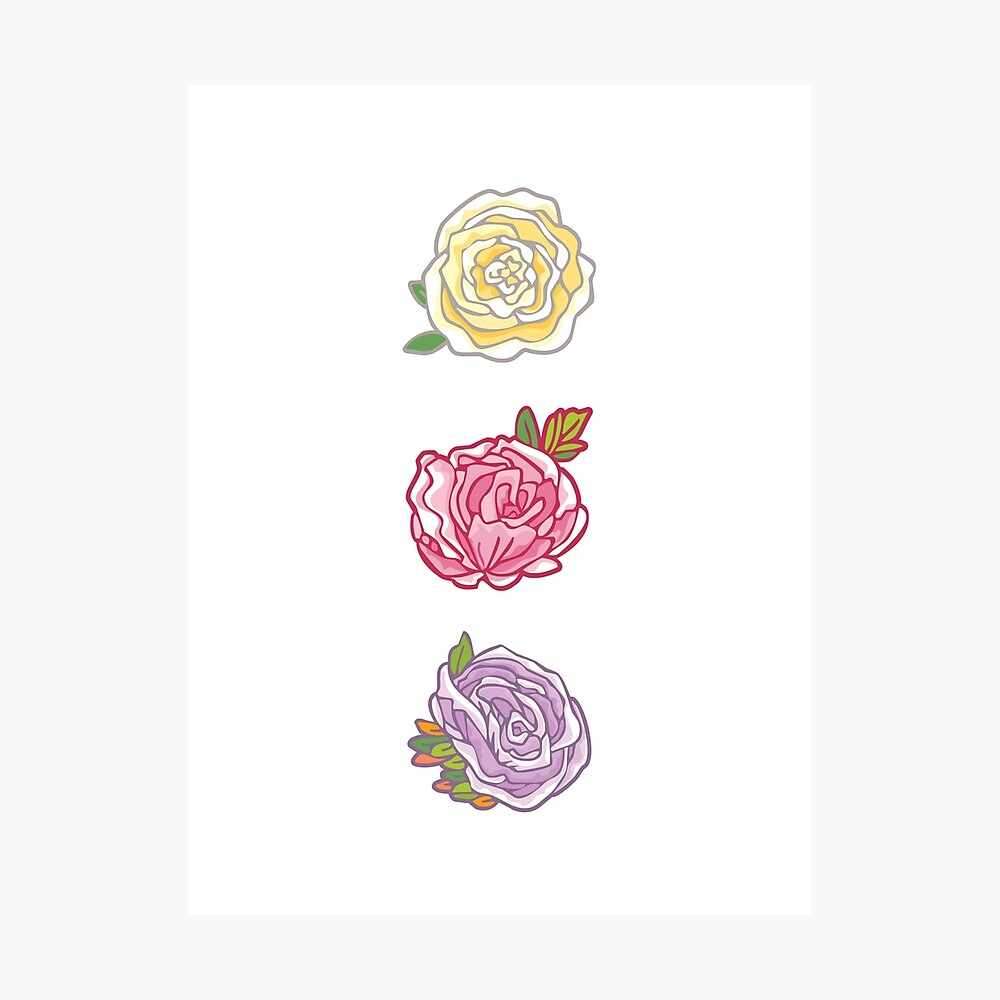 Decorative Roses Photographic Print