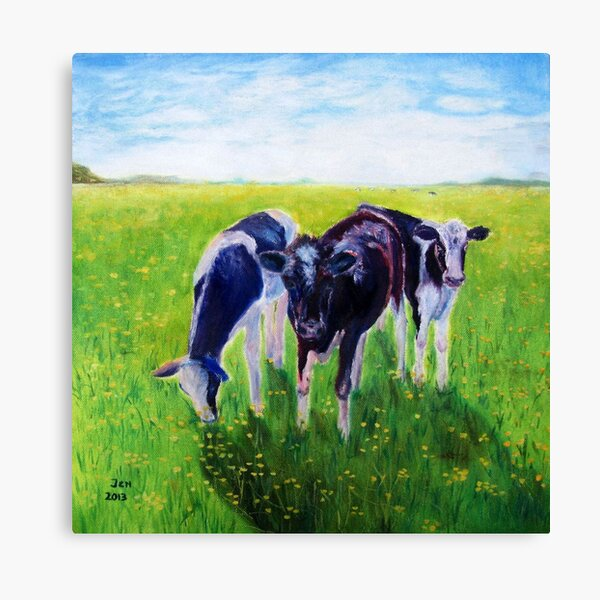 Young Cow Canvas Print