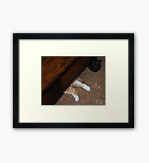 You Can't See Me Framed Print