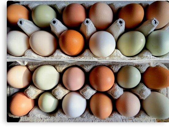 The Incredible Edible Egg...Fresh Pickins by Diane Arndt