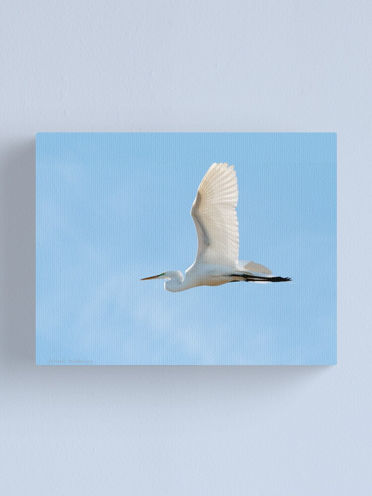 Alternate view of Soaring... Canvas Print