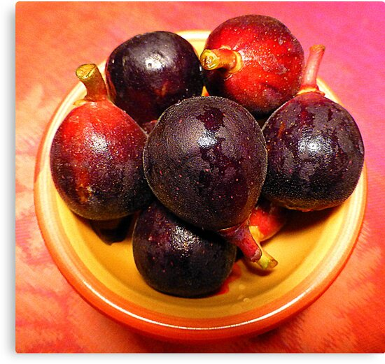Baby Figs by Fara