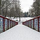 Queen's Park Bridge in the Winter Freeze by Sarah Williams