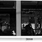 3825B by Berns
