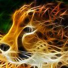 Cheetah by srhayward